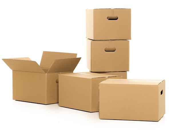 cartons.jpg
